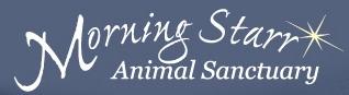 Morning Starr Animal Sanctuary