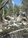 Yosemite Creek 6 miles above Yosemite Falls