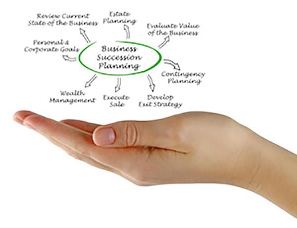 Business Succession Planning Blueprint